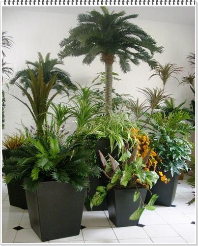 Bienvenido inova decora for Decoracion de oficinas con plantas