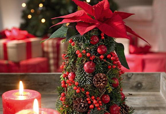 Navidad decorklass jardiner a y decoraci n for Centros navidenos caseros