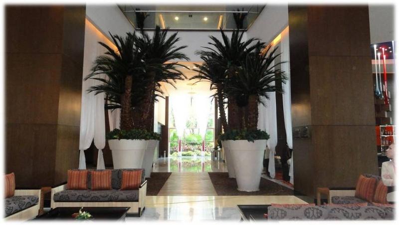 Palmas preservadas decorklass jardiner a y decoraci n - Lamparas las palmas ...