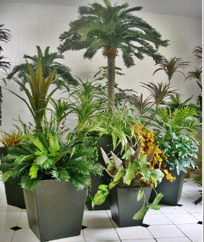 Macetas en renta para exposiciones decorklass jardiner a for Decoracion de oficinas con plantas