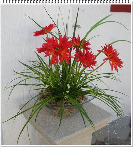 Arreglos para hoteles decorklass jardiner a y decoraci n - Centros de plantas naturales ...